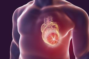 Pilar #3 - Para aumentar a Capacidade Cardíaca