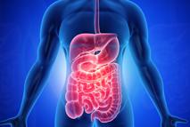 Etapa #3 - Revitalize seus órgãos vitais