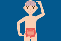 Etapa 1 - Conexão Cérebro-Intestino
